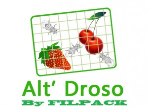 Logo Alt' drosophile by filpack